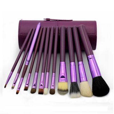 12 pieces Professional Makeup Brush Kit